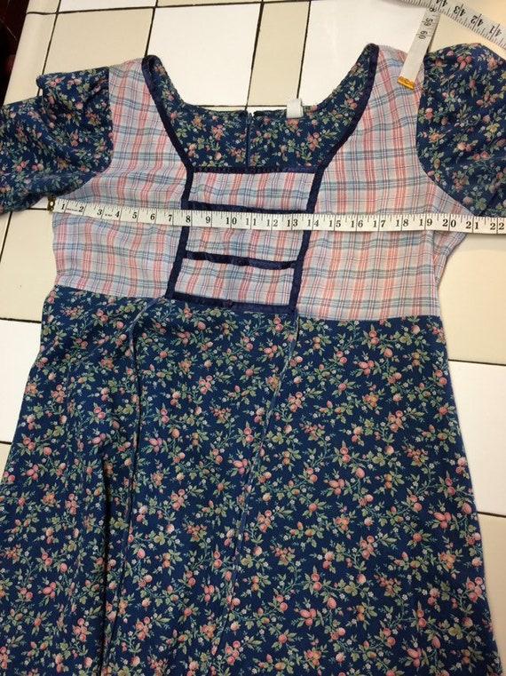 Vintage Prairie Dress - image 10