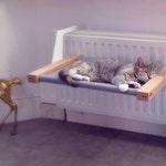 WOOZY   Pet hammock / Pet bed   Dutch design   Made in Holland.