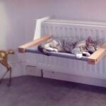WOOZY | Cat radiator hammock / Cat bed