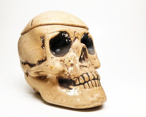 Antique Skull Chalkware Humidor