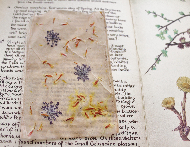 Dried Flower Natural Dye Paper Art Ephemera Piece Etsy