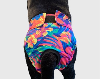 Bitch Britches, Dog Diaper, Dog Panties for Heats and incontinence. Custom made, Velcro, washable, and adjustable floral, neon, Hawaiian