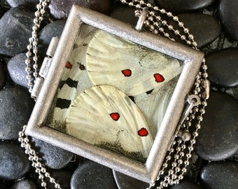 Red Parnassius Butterfly Pendant