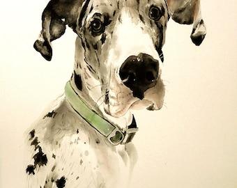 Pet portrait.Custom painting.Dog art.Dog painting