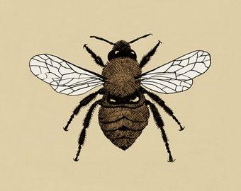 Bumblebee Entomology Greeting card