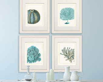 Set of 4 Blue Coral & Sea Urchin Prints - Nautical Print nautical decor Art Illustration nautical Poster beach house decor nautical wall art