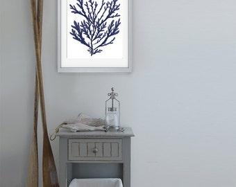 Navy Blue Nautical Print - Blue Coral art (15) Bathroom decor coral wall art coral beach decor coastal decor beach Coastal art marine print