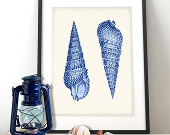 Shell wall art - Blue Shell Duo 1 - seashell art print sea shell print coastal wall art Beach House Decor beach house wall art Bathroom art