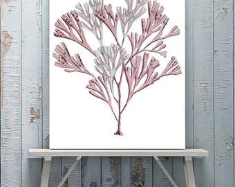 Pink coral art print 12  pink room decor pink art print pink Coral print coral wall art pink Bedroom wall art Bathroom wall art bathroom art