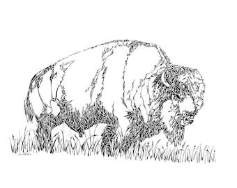 Bison drawing, buffalo, bison illustration, wild animals, animal nursery art, wall decor, wildlife artwork, wildlife drawing