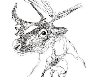 Caribou spirit drawing, caribou illustration, line drawing, reproduction of original drawing, animal artwork, woodland animals, caribou art