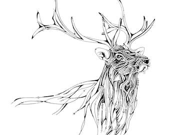 Elk line drawing, elk illustration, wildlife artwork, unique black and white drawing, fine art print, woodland animals, wapiti, American elk