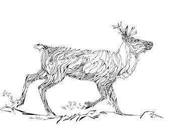 Woodland caribou drawing, caribou illustration, black and white nature artwork, woodland animals, endangered species, animal wall decor