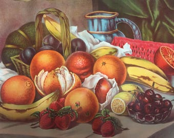 """Antique Picture/poster Assorted Fruit No.1 20""""x16"""""""