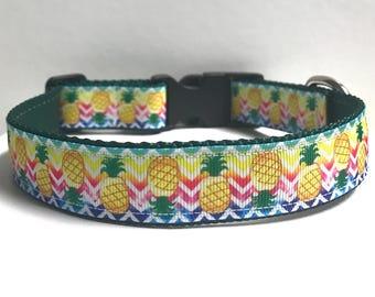 """1"""" cartoon pineapple collar, Leash Available"""