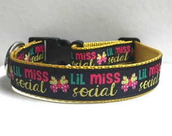 "1"" Lil Miss Social Butterfly Collar"