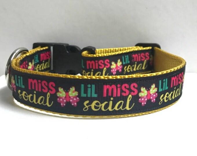 "1"" Lil Miss Social Butterfly Collar"