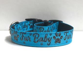 "5/8"" Furbaby on Blue Collar"