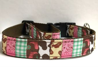 """1"""" A little bit of country Dog collar"""