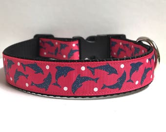 """1"""" Dolphins & Dots Dog collar"""