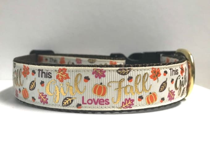 "1"" This girl loves fall collar"