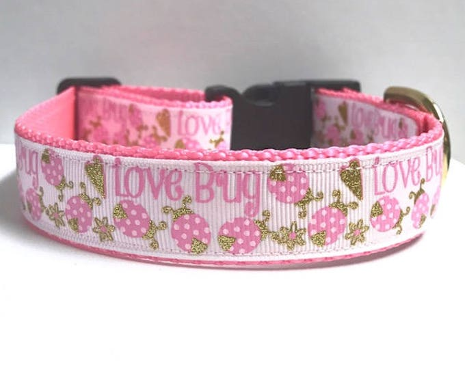 "1"" Love Bug Collar"