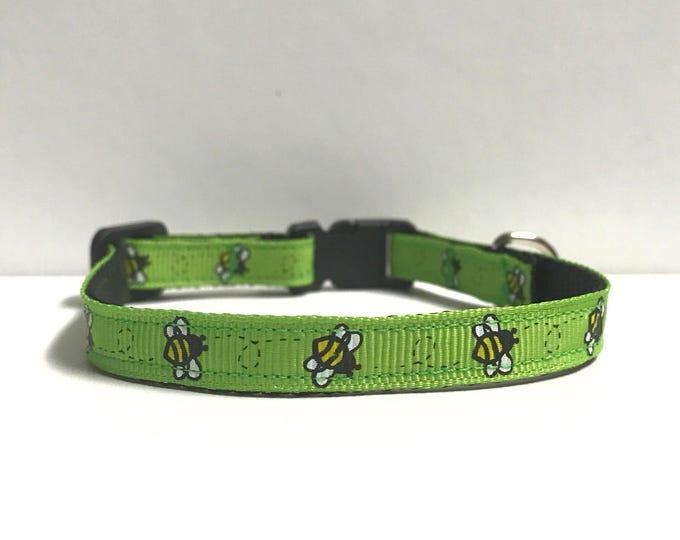 """3/8"""" bumble bees & Green collar"""