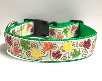 """1"""" Blowing in the fall breeze Dog collar"""
