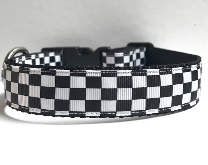 "1"" Race Ready collar"