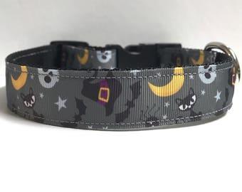 "1"" Halloween Night Dog collar"