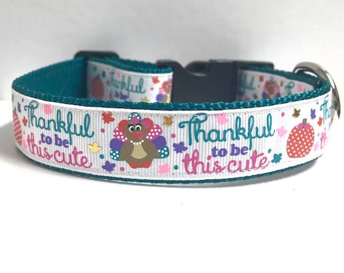"""1"""" Thankful to be this Cute Dog Collar"""