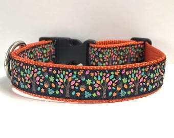 "1"" Perfect Autumn Day Dog Collar"