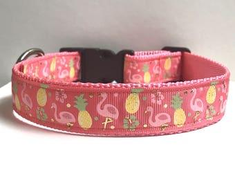 "1"" Flamingo & pineapple collar"