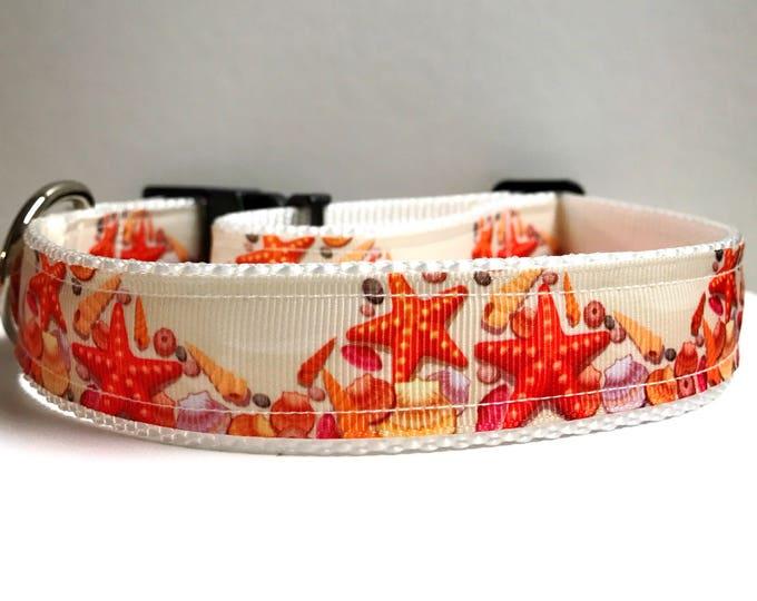 "1"" Starfish collar"