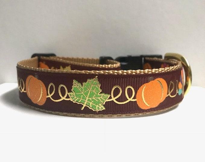"1"" Leaves, Pumpkins & turkeys Dog collar"