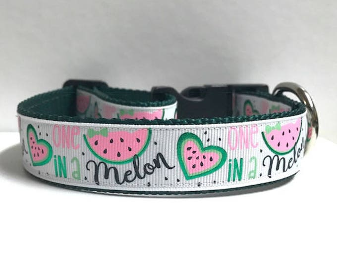 """1"""" One in a Melon Collar"""