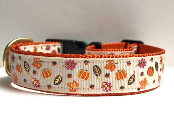 """1"""" Mini Leaves & Pumpkins Collar"""