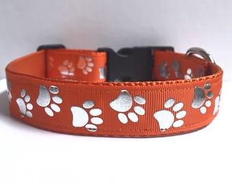 "1"" Silver Paws on Orange Dog collar"
