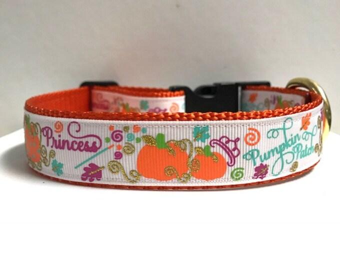 "1"" Pumpkin Princess, Gold Vines Dog Collar"
