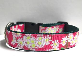 """1"""" Daisy's on Pink, Lilly inspired Collar"""
