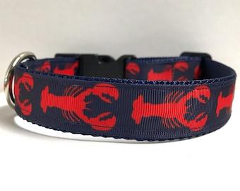 """1"""" lobster on navy collar"""
