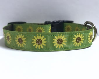 "5/8"" Sunflowers on Green collar"