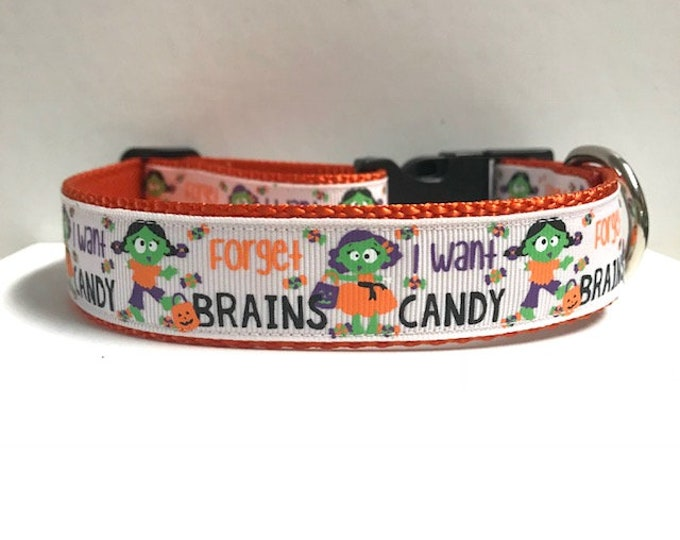 """1"""" Forget Brains, I want Candy Dog Collar"""