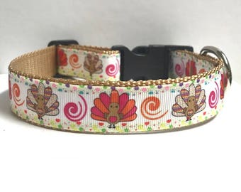 "1"" Turkey & swirls Dog Collar, Leash Available"