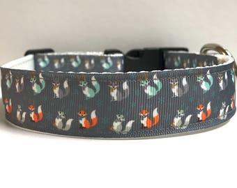 """1"""" mini fox collar, Leash Available"""