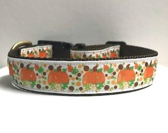 "1"" Gold Dots & Pumpkins Dog Collar"