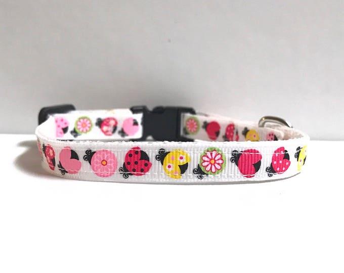"3/8"" ladybugs collar"