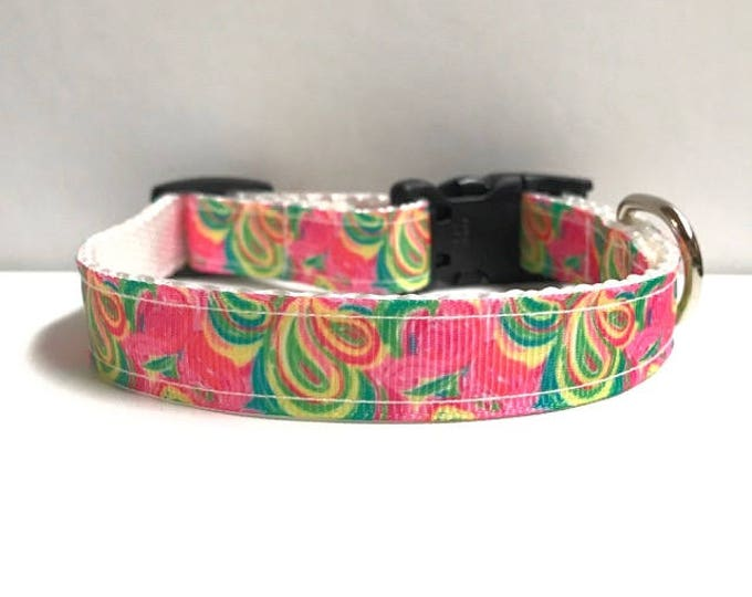 "5/8"" Paisley lilly inspired collar"