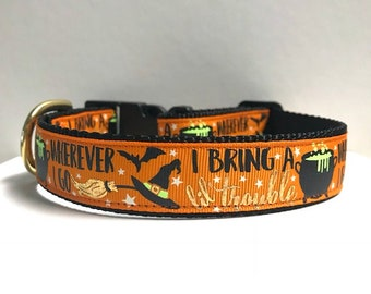 "1"" I bring Trouble where ever I go Dog Collar"