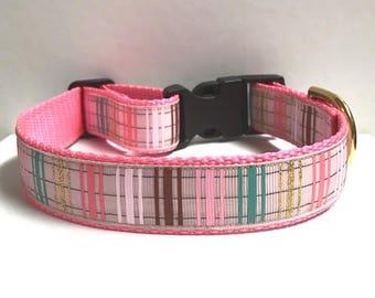 "1"" Strawberry Stripes Dog Collar"